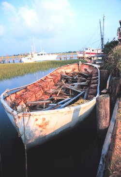 Derelict: a ship's lifeboat, built of steel and rotting away in the wetlands of Folly Island, North Carolina