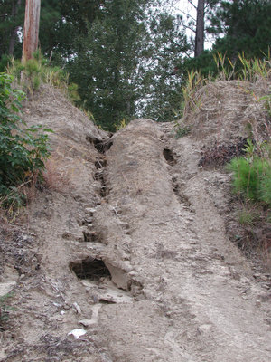 Bank erosion started by four wheeler All-terrain vehicles, Yauhanna, South Carolina